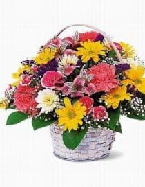Bunga Segar 03