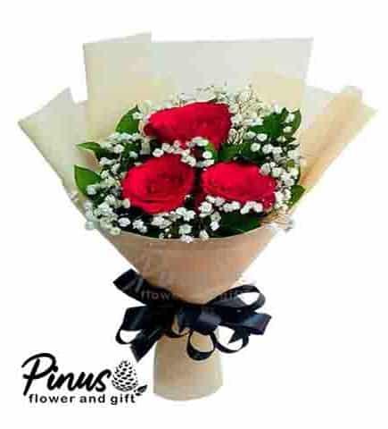 Garut - La Reso Roses
